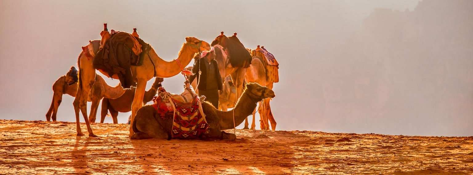 Tourism Resilience in the Face of COVID-19 in Jordan